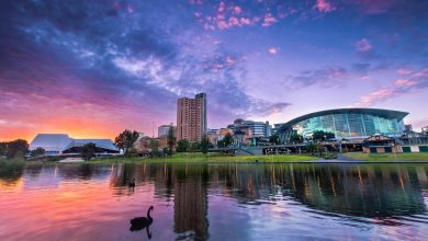 Fun things to do in Adelaide